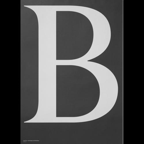 BERLINGSKE - B