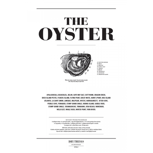 Poster OYSTER - Dry Things